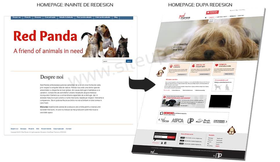 red-panda-portofoliu_09